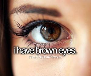 eyes, brown, and brown eyes image
