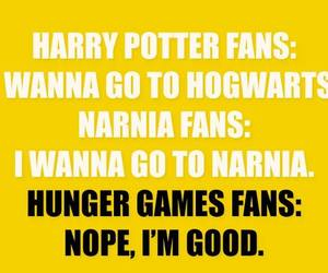 narnia, hunger games, and harry potter image