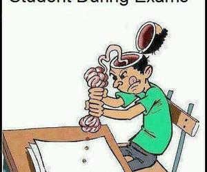student, exam, and brain image