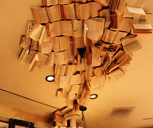 book and ceiling image