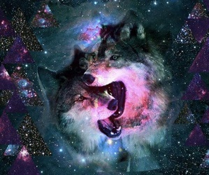 wolf, galaxy, and hipster image
