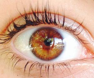 beautiful, eyelashes, and girl image
