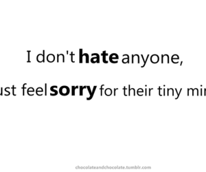 hate, mind, and sorry image