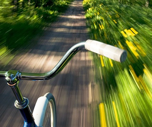 bike, way, and forest image