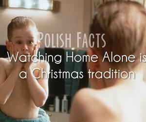 christmas. home alone. and polish facts image