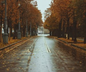 autumn, city, and moscow image