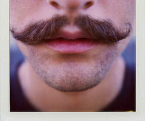 moustache, guy, and mustache image
