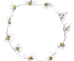 flowers, daisy, and crown image