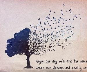 collide, hope, and quotes image