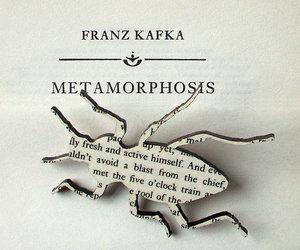 book and franz kafka image