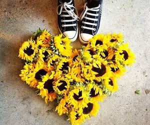 sunflower, heart, and love image