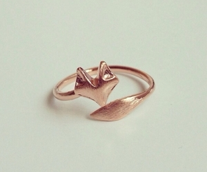 fox, ring, and beautiful image