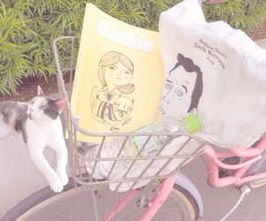 bicycle, bike, and cat image