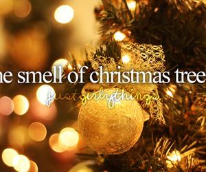 christmas, tree, and smell image