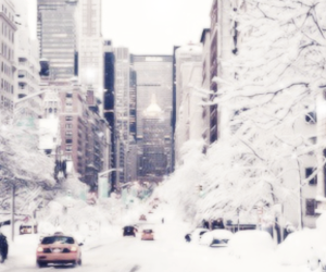 header, snow, and twitter image