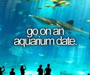 date, before i die, and aquarium image