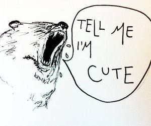cute, bear, and funny image
