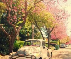 car, trees, and vintique image
