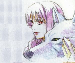 wolf's rain and anime image