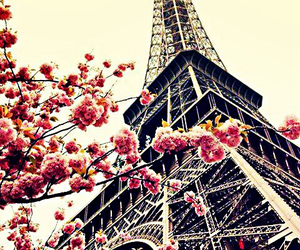 eiffel tower, paris, and pink image