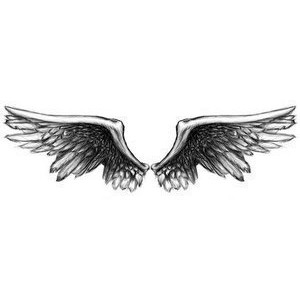90 Images About Wings On We Heart It See More About Angel Wings