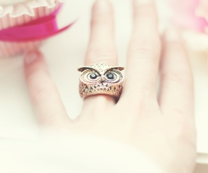 jewelry, owl, and ring image