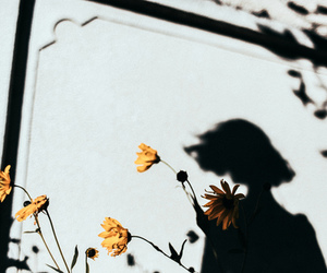 flowers, shadow, and girl image
