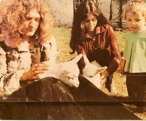 robert plant, couple, and led zeppelin image