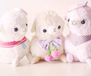 alpacas, awesome, and cute image
