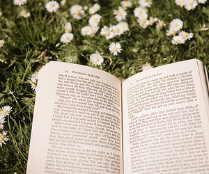 book, flowers, and beautiful image