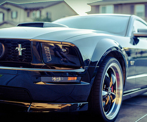 car, luxury, and mustang image
