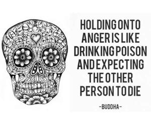 anger, Buddha, and poison image