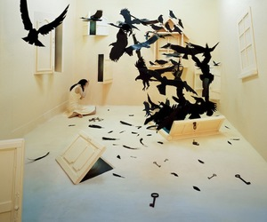 art, bird, and black image