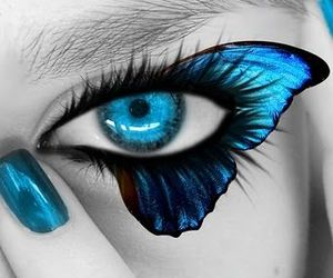 butterfly, blue, and eye image