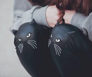 cat, black, and leggings image
