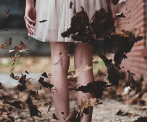 girl, leaves, and autumn image