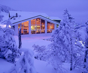 snow, winter, and house image