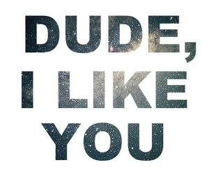 dude, like, and quotes image