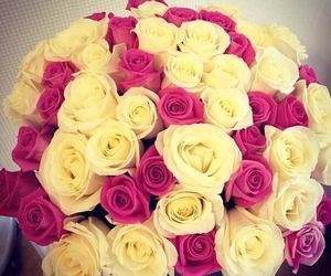 flowers, yellow, and pink image