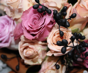 berries, blackberry, and bouquet image