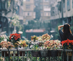 girl, flowers, and city image