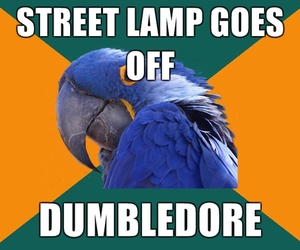 harry potter, dumbledore, and light image