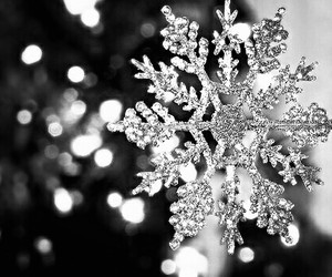 snow, winter, and flakes image