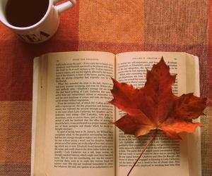 book, autumn, and beautiful image