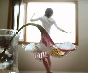 flowers, dress, and dance image