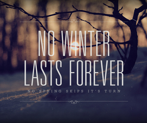 winter, forever, and spring image