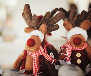 christmas, reindeer, and winter image