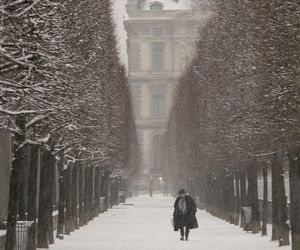 winter, snow, and paris image