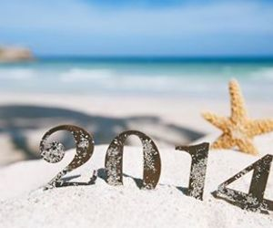 2014, beach, and summer image