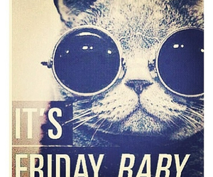 friday, cat, and baby image